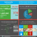 Salmonella by the Numbers Infographic