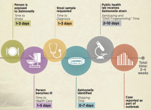 Salmonella Pistachio Outbreak Timeline