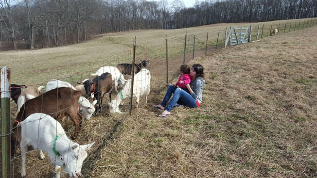 Oak Leaf Goat Farm Causes E. coli in Mother and Daughter