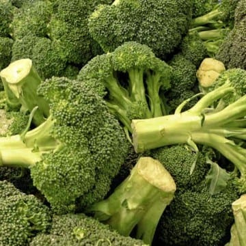 Broccoli recall Listeria contamination