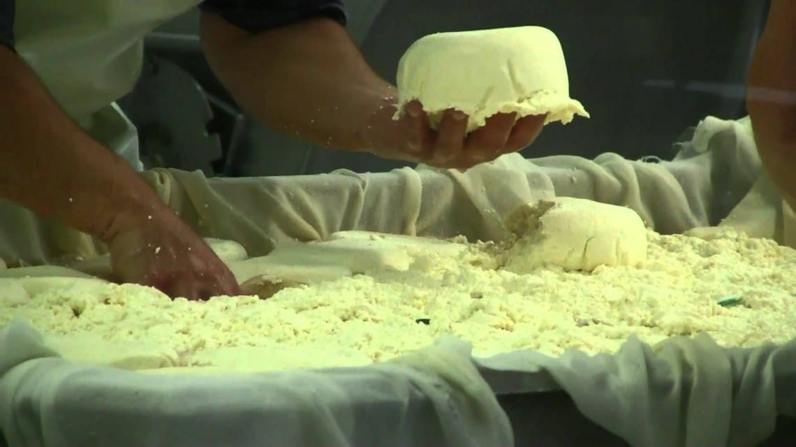 Mexican cheese salmonella california