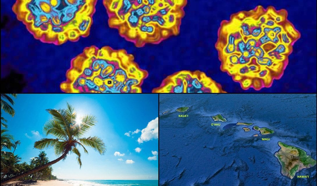 Hawaii Hepatitis A Outbreak