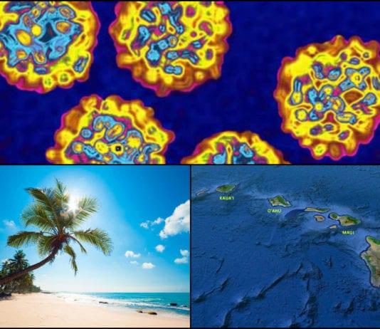 Hawaii Hepatitis A Outbreak