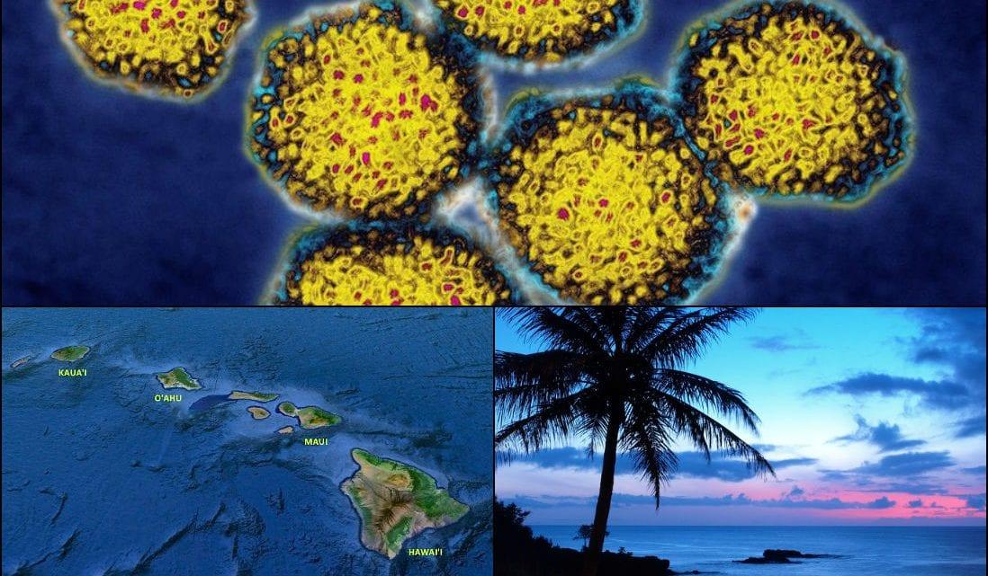 Hepatitis A Hawaii Outbreak