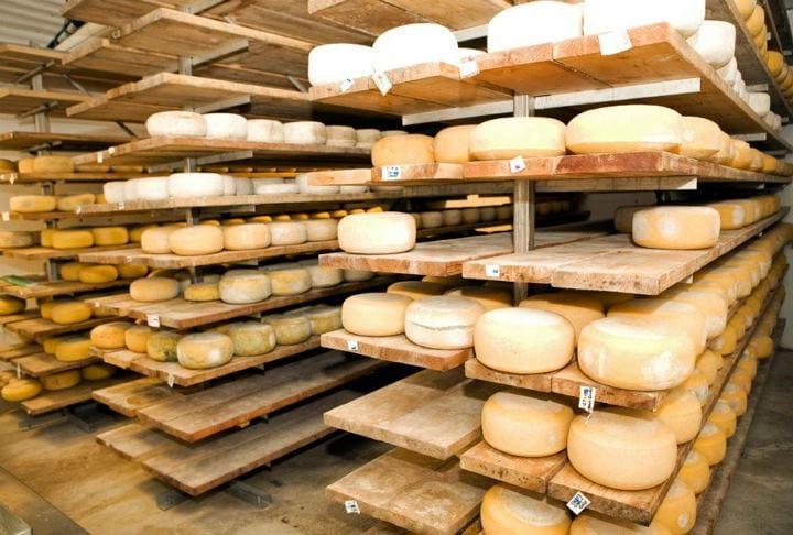 Grassfields Cheese organic cheese E coli Recall Michigan