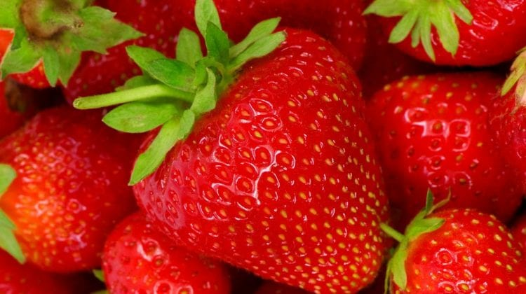 Tropical Smoothie Cafe Hepatitis A stawberry outbreak