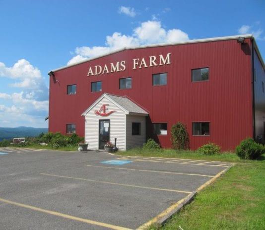 Adams Farm Recalls E coli contaminated beef veal bison