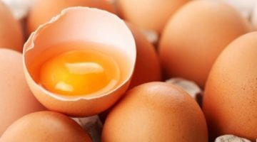 salmonella outbreak good earth egg company shell eggs