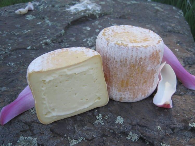 Vulto Creamery Listeria Outbreak