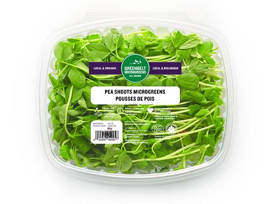 Microgreen Listeria Contamination Recall