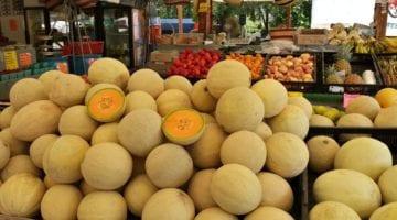 Melon Salmonella Lawsuit