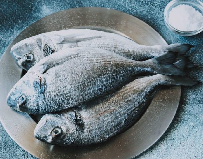 Mercury poisoning in fish