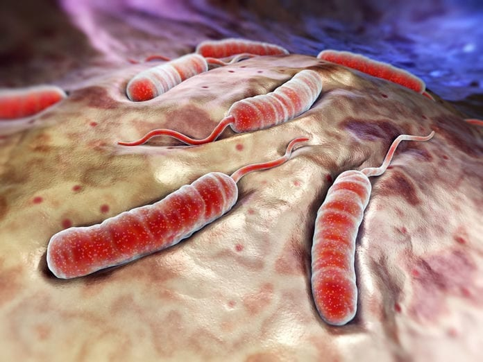 Preventing Potentially Deadly Cholera