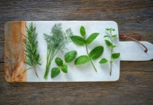 Food Safety in Sprouts vs. Microgreens