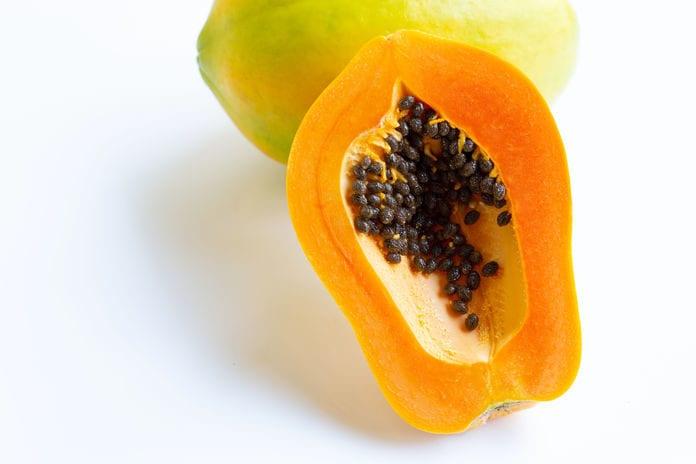 Cavi Brand Papaya Lawyer
