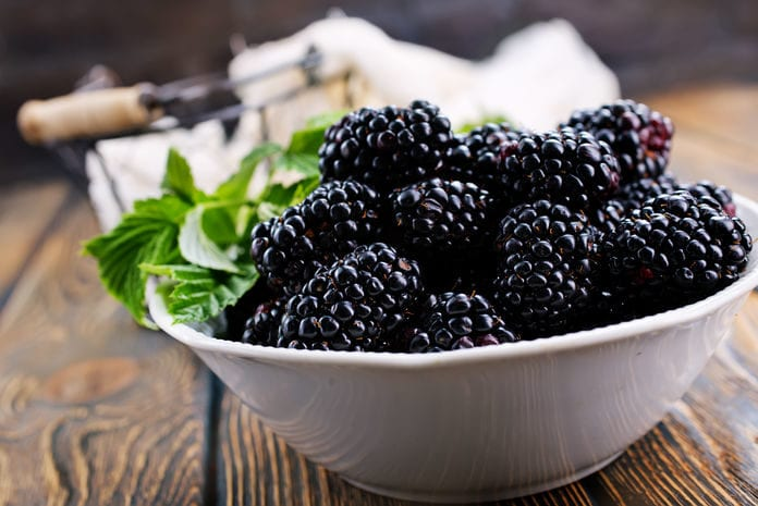 Fresh Thyme Farmers Market Hepatitis A Found in Blackberries